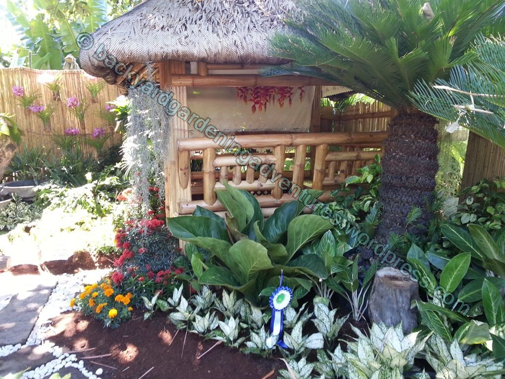 garden design with bahay kubo