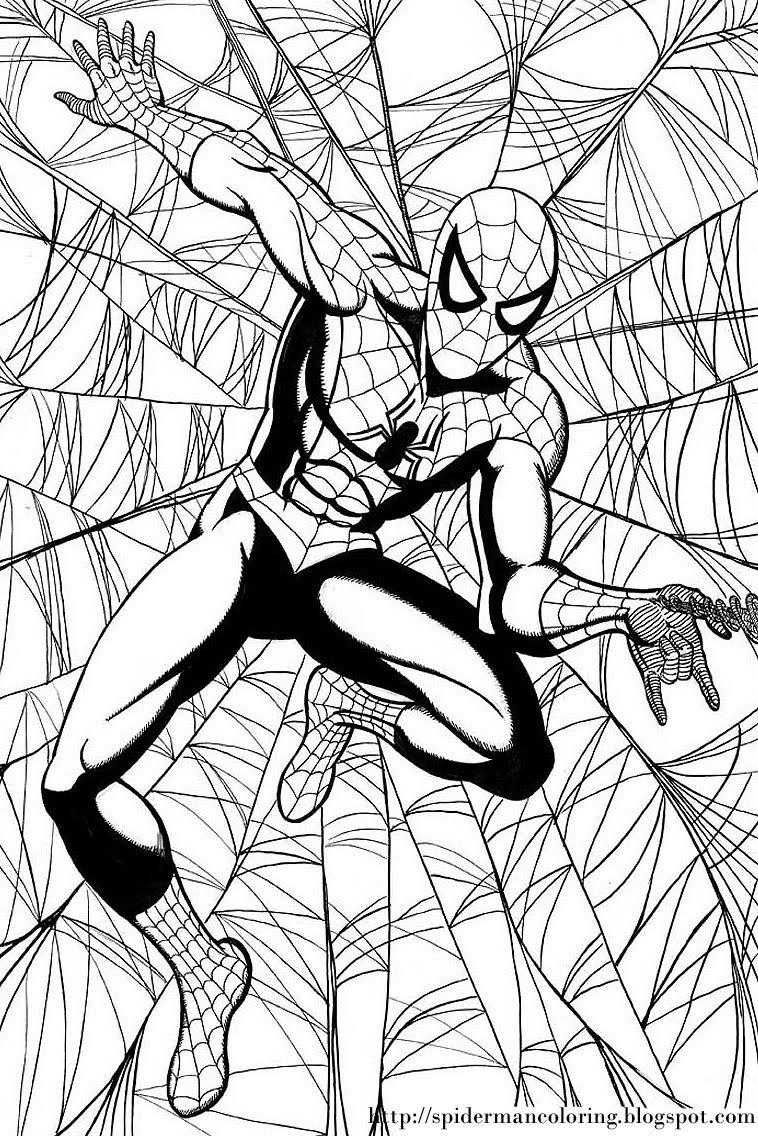 Spiderman Coloring Free Spiderman Coloring Spiderman Coloring Cartoon Coloring Pages Coloring Pages