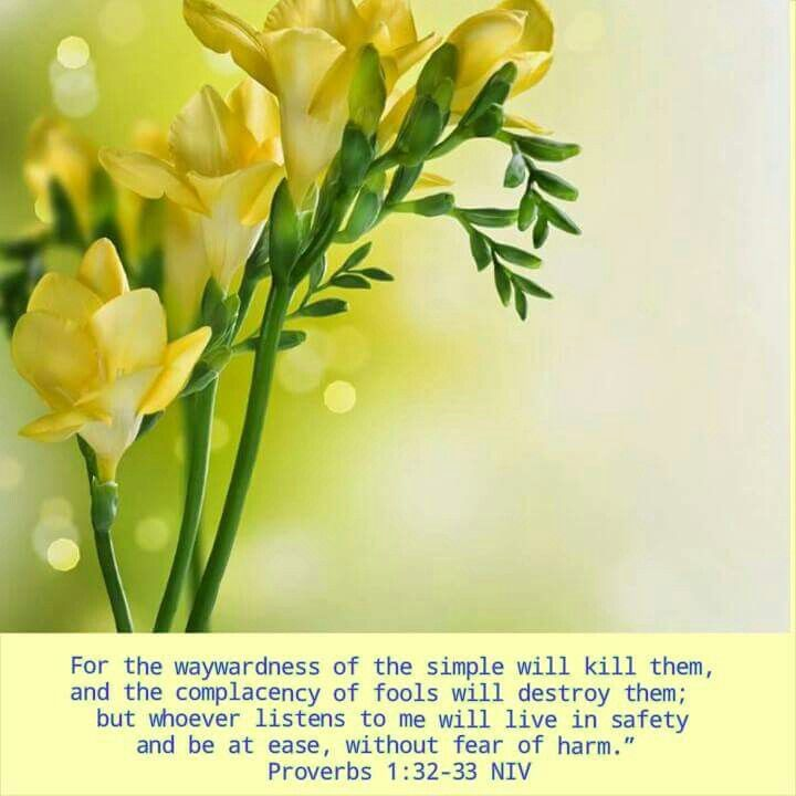 """For the waywardness of the simple will kill them, and the complacency of fools will destroy them; but whoever listens to me will live in safety and be at ease, without fear of harm."""" Proverbs 1:32-33 NIV"""