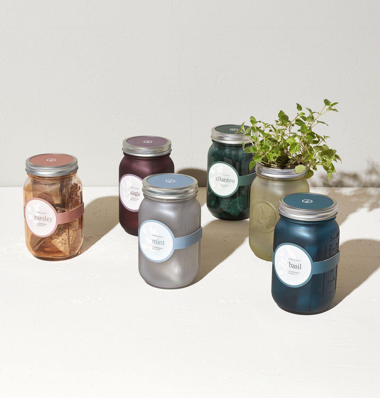 garden jars herbs in 2020 mason jars mason jar on indoor herb garden diy wall mason jars id=50323