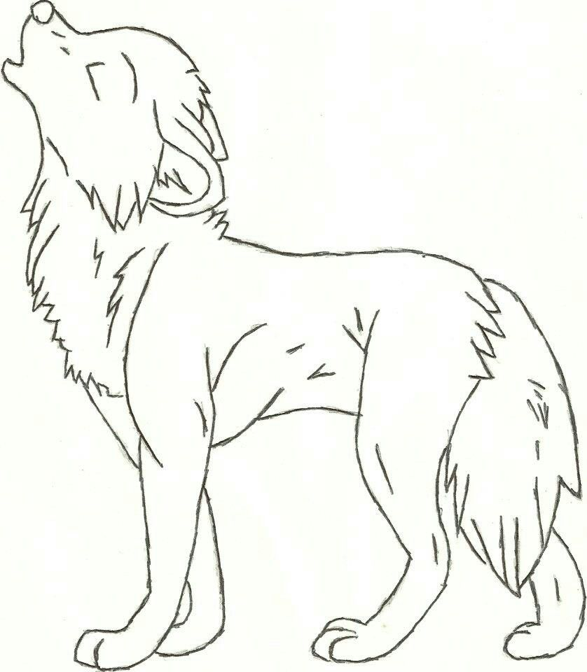 Wolf Easy Animal Drawings Animal Drawings Wolf Drawing