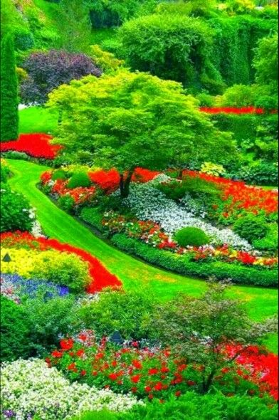 Butchart Gardens Bc Canada Beautiful Gardens Beautiful Nature Beautiful Flowers Garden