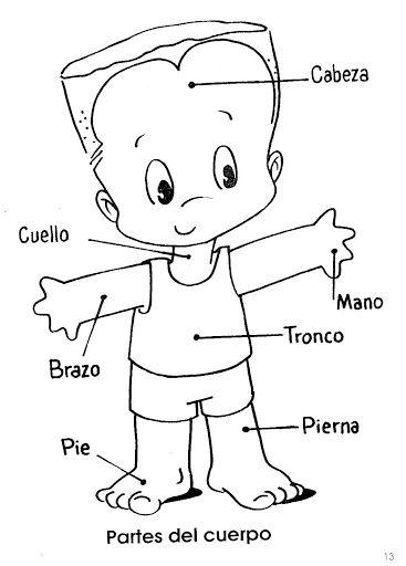 El Cuerpo Humano Para Colorear Partes Del Cuerpo Humano El Cuerpo Humano Infantil Partes Del Cuerpo Preescolar