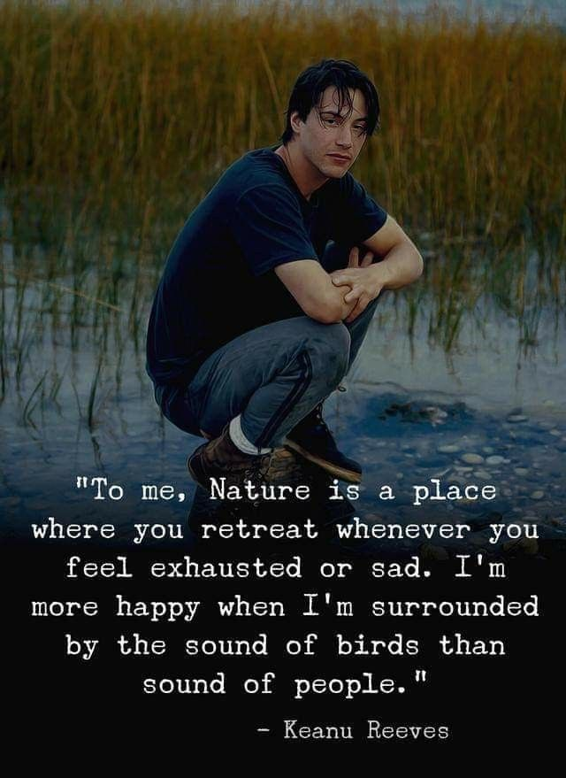 Disconnecting is healing when you reconnect with nature
