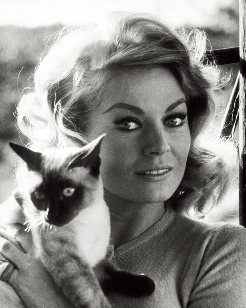 The 50 Most Fabulous (and Famous) Cat Ladies of All Time