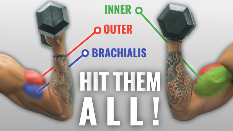 The Ultimate Dumbbell Bicep Workout You Need For Massive Arms #bicepsworkout Want bigger biceps that visibly pop under your sleeves? Thankfully, building bigger arms isn't challenging. In this article, I'll go through the best dumbbell bicep workout that targets each part of your biceps, so you add the muscle mass you... #bicepsworkout