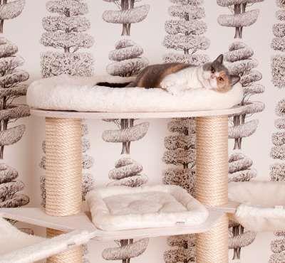 Katzen Kratzbaum System Kratzbäume aus Vollholz direkt