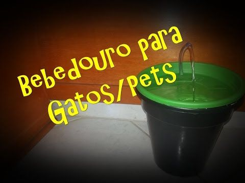 Bebedouro X2f Fonte Para Gatos Youtube Fonte Para Gatos Como