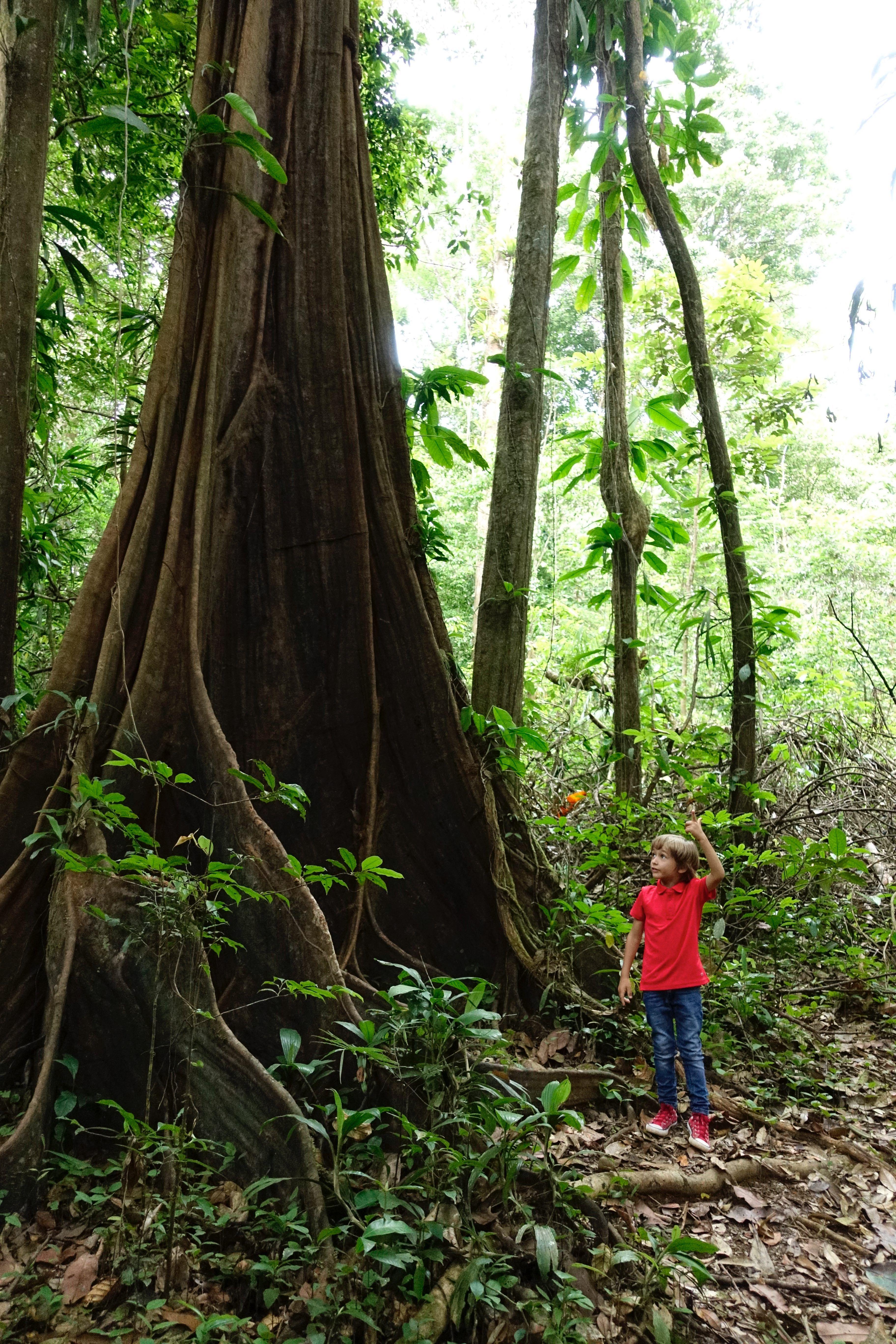 #Amazonie #Guyane #tournage #ArthurAutourDuMonde #découverte #voyage