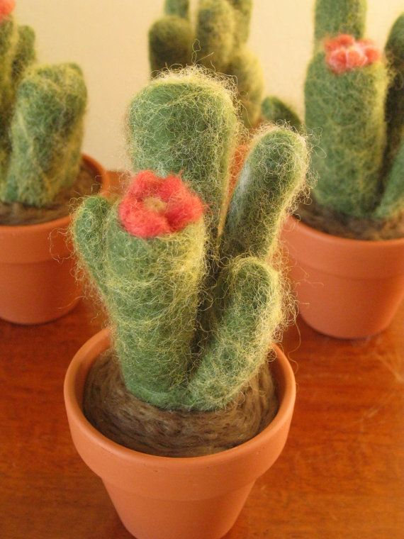 Made to Order  Felted Cactus by saranoh77 on Etsy, $16.00