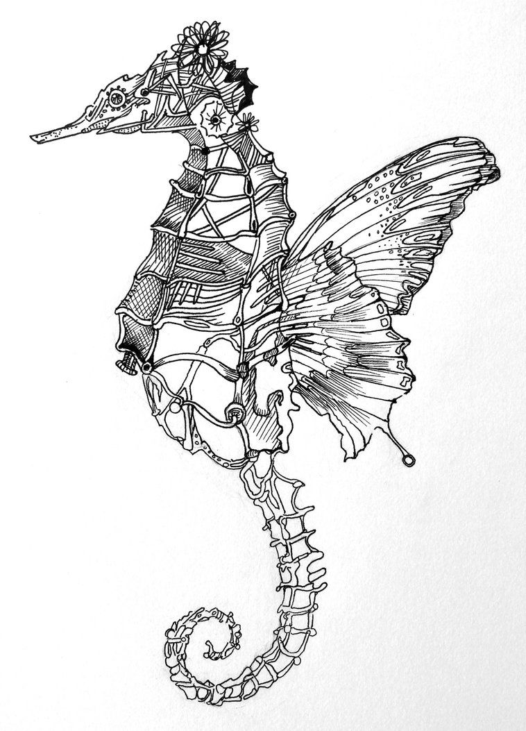 Sea Butterfly By Neon999 Of Elephants And Seahorses Drawings