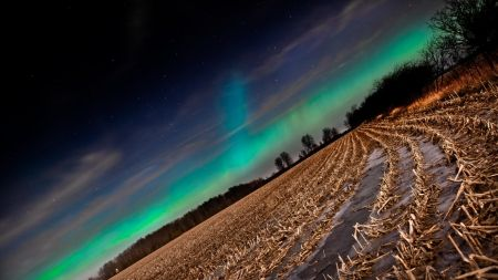 aurora on cultivated fields HD Wallpapers, Wallpapers For Desktop, Android, Iphone,nature wallpapers,anime wallpapers,car wallpapers