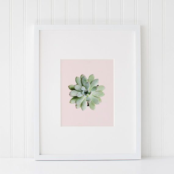 Pink Succulent Art Printable Succulent Plant Photography Etsy Succulent Art Gallery Wall Printables Succulent Wall Art
