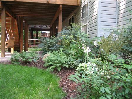 Under Deck Landscape Design Plantings