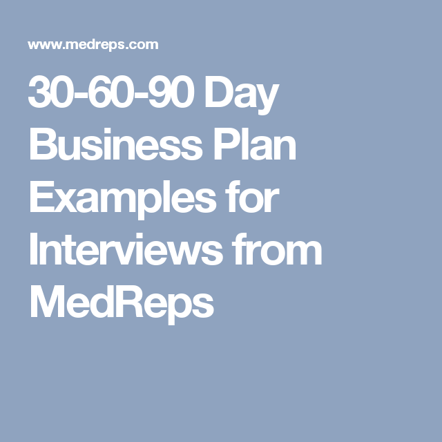 Day Business Plan Examples For Interviews From MedReps - Business plan for interview template