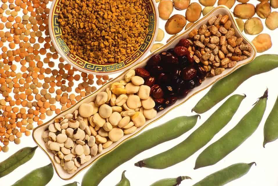 Bælgfrugter hører til nederst i Madpyramiden. Det betyder, at du skal spise løs af ærter, bønner og linser. Her får du en oversigt over de mange varianter. Bælgfrugter findes i mange former og farver, og vi kan nærmest ikke få for mange af dem. De små runde frø fra ærter, bønner og linser er smækfyldte... Se mere Hele opskriften Bælgfrugter - guiden til linser, bønner og ærter kan ses her Madens Verden.