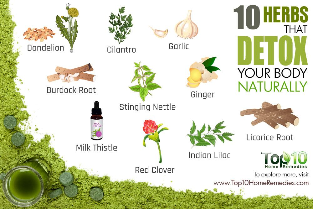 10 Herbs that Detox Your Body Naturally | detox | Kidney