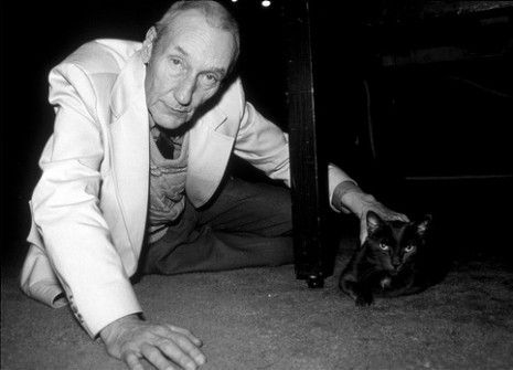 """In The Cat Inside William Burroughs paid a great compliment to his favorite animals: """"My relationships with my cats has saved me from a deadly, pervasive ignorance."""""""