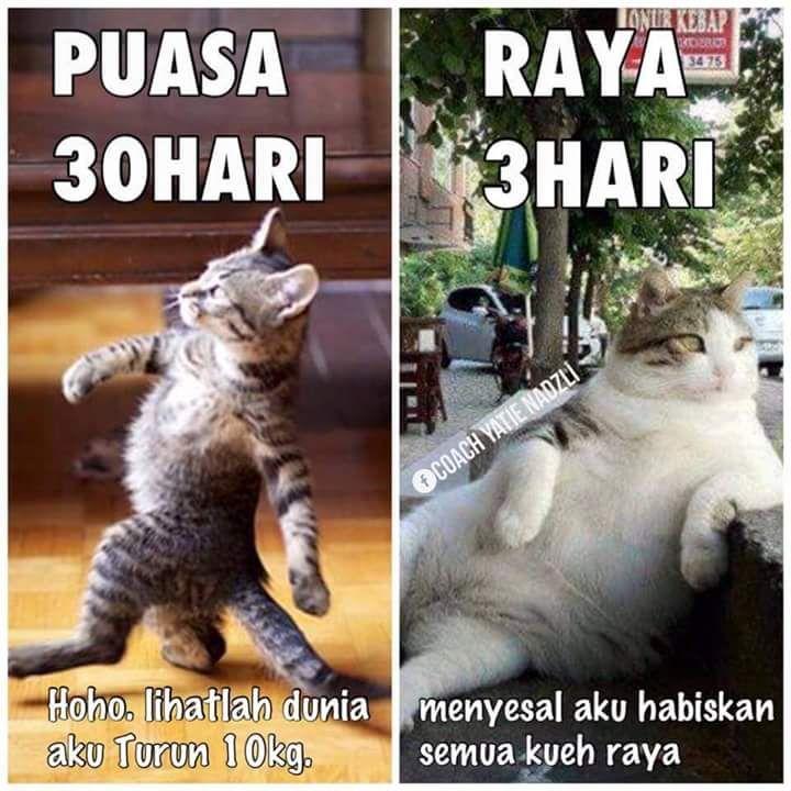 Pin Oleh Hadi Di Humour Lucu Meme Personal Trainer