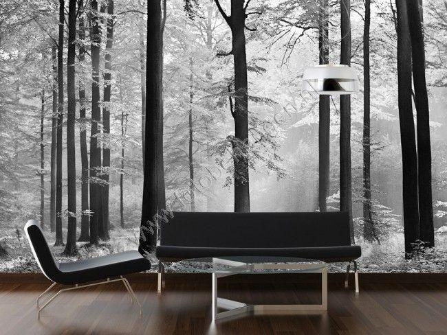 15x Eucalyptus Huis : Fotobehang avalon nieuwe huis ideeën pinterest wit behang