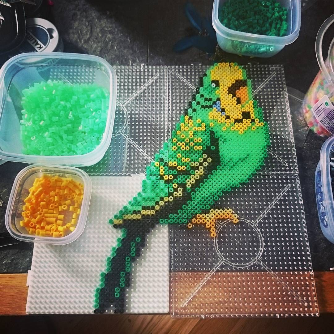 Parakeet bird hama beads by _calesta_