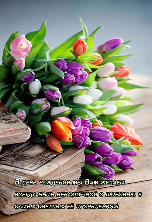 Открытки «C днем рождения» женщине (36 фото) | Тюльпаны ...