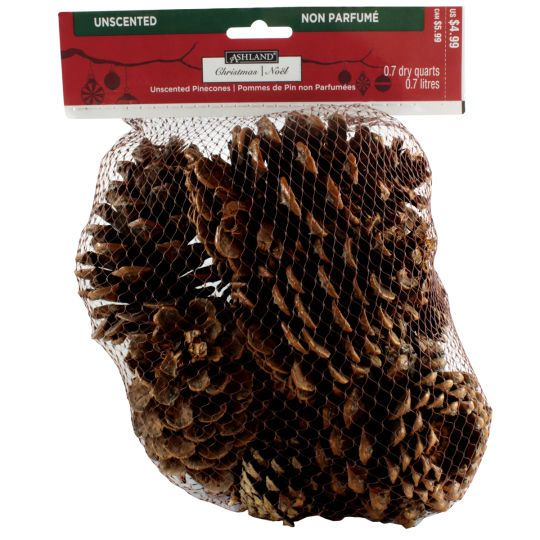 3fe7095ad7c4 MICHAELS $2.99 in store only - Bring autumn indoors! These real pinecones  are ideal for decorating your home for fall or c.