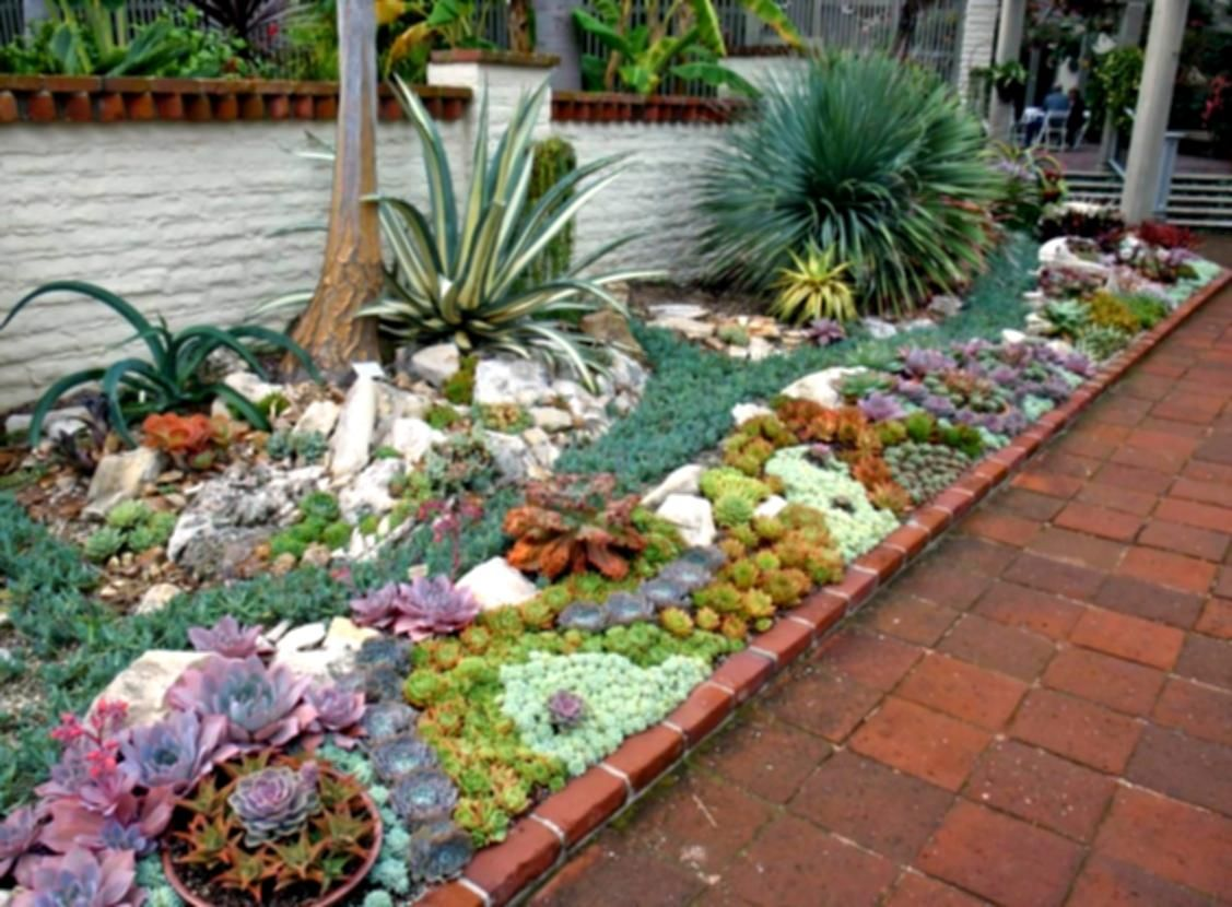 Succulent Rock Garden Ideas D Home Design Houzz Landscaping