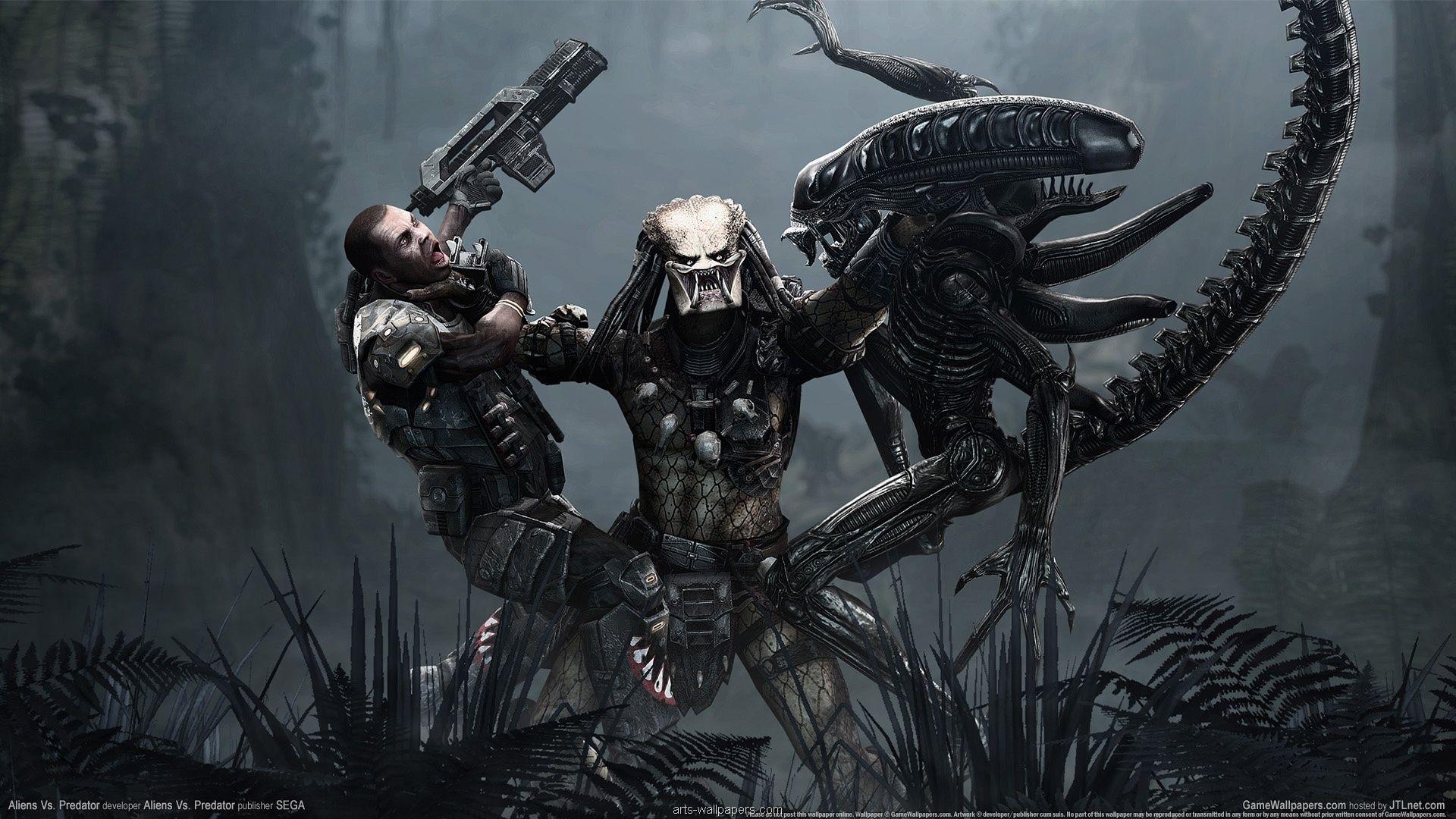 Game Hd Wallpapers 10 Aliens Versus Predator Predator Movie Alien Vs Predator