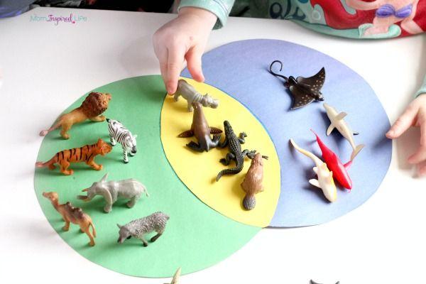 Venn diagram games for kids vatozozdevelopment venn diagram games for kids sorting animals venn diagram activity venn diagrams diagram and venn diagram games for kids ccuart Choice Image