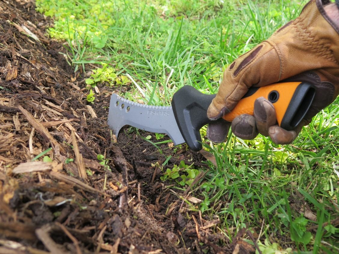 Fall Yard Cleanup Guide Using Clearing Tools I Yard Cleanup