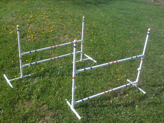 2 Dog Training Jumps Agility Obedience Rally Fun Free Us