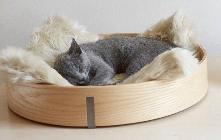 corbeille lit design pour chat anello ch ne clair couchage lit design pour chat anello ch ne. Black Bedroom Furniture Sets. Home Design Ideas