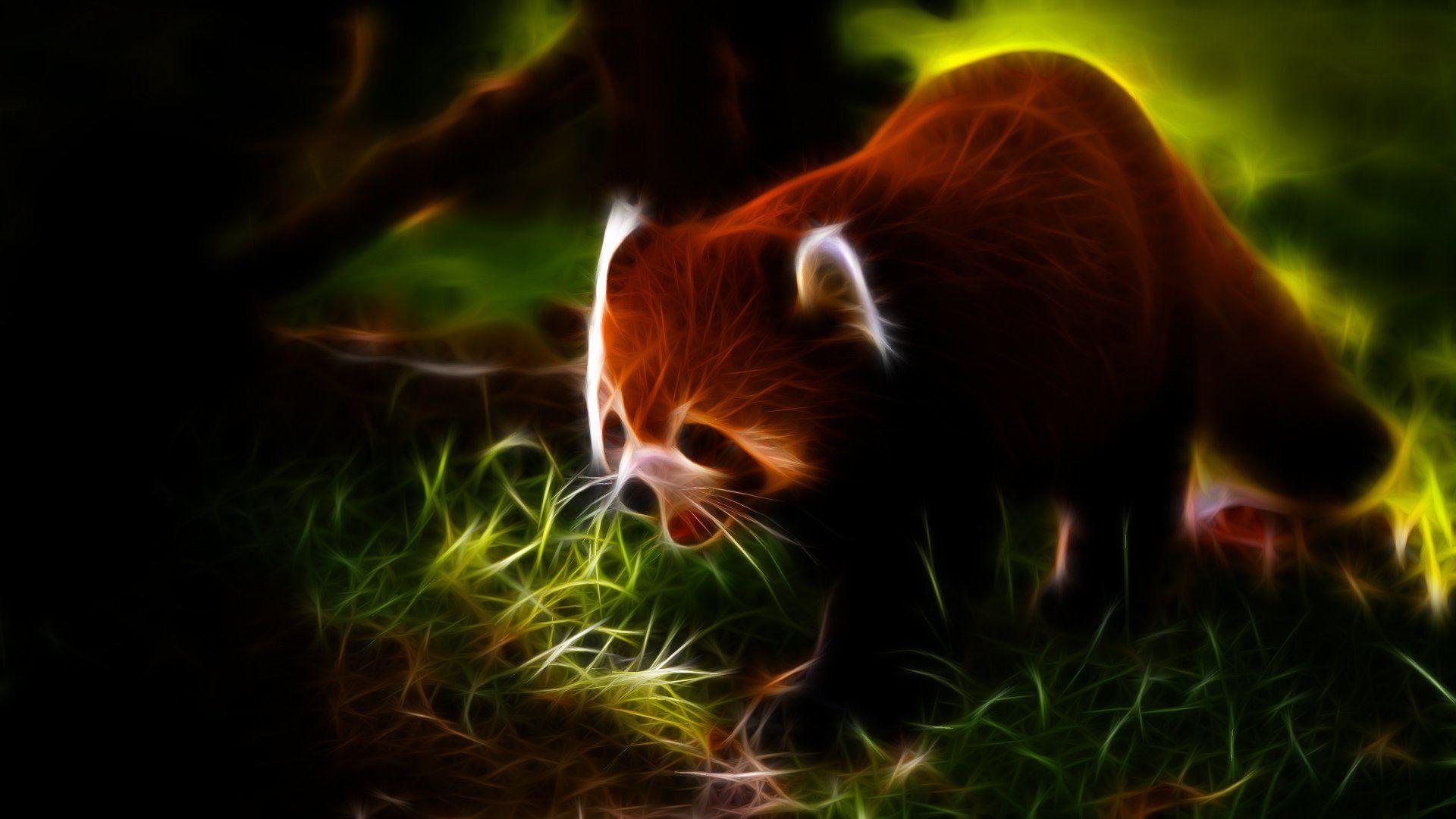 Animals Fractalius Red Pandas Wallpaper 1920x1080 241087 Panda Wallpapers Panda Art Red Panda