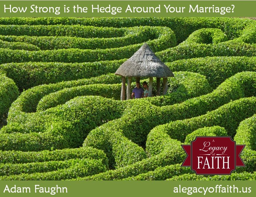 How Strong Is the Hedge Around Your Marriage?