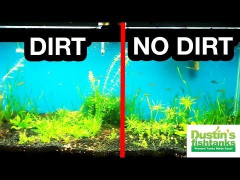DIRT VS NO DIRT PROOF Planted Tank Substrate Time Lapse of Growth - YouTube