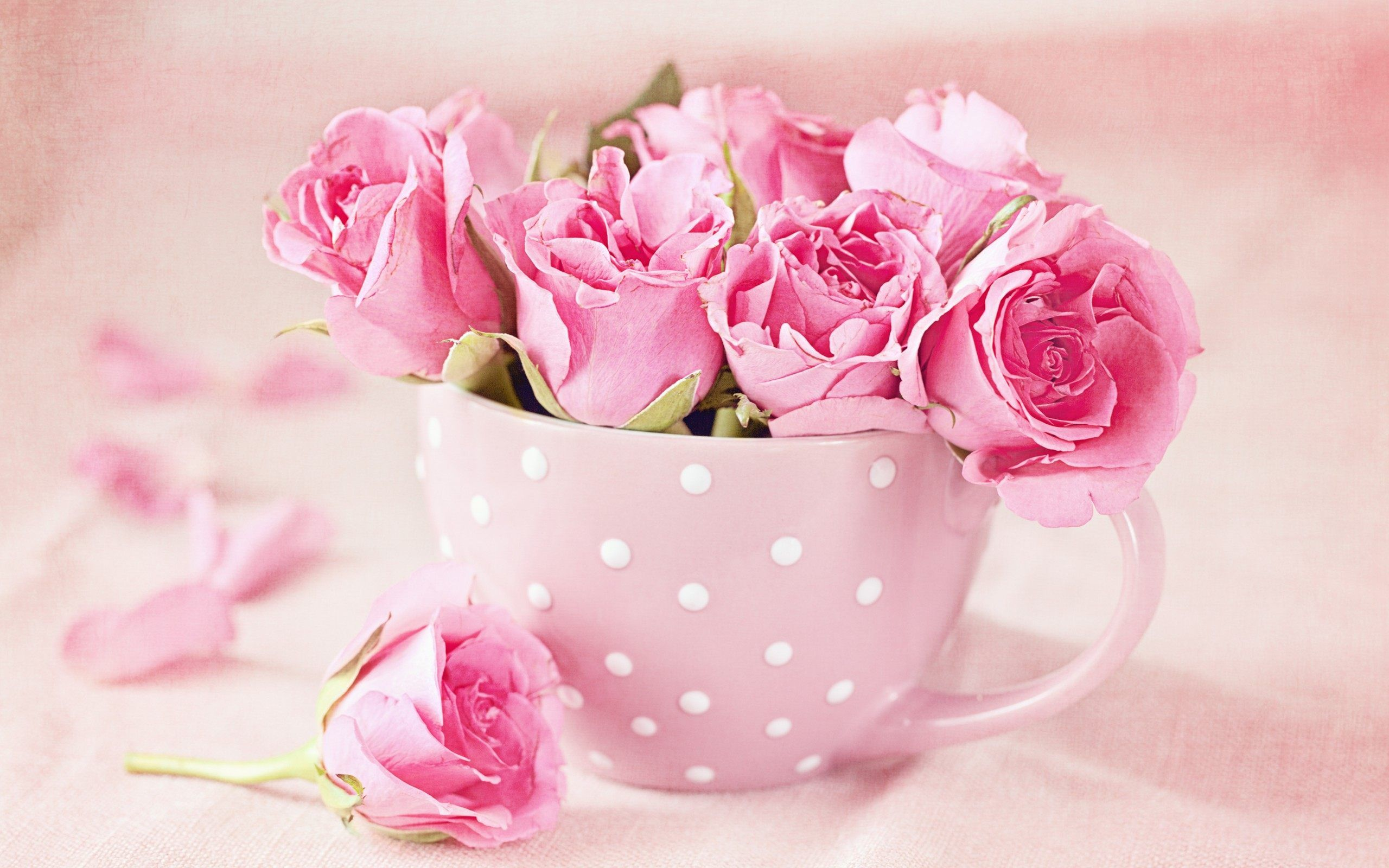Pin By Ratmissing Coolheart On Ff Pinterest Rose Wallpaper 3d