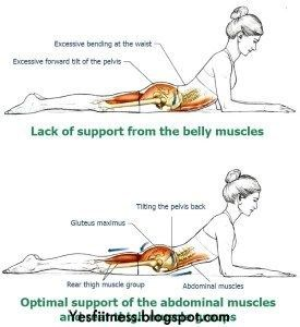 Strengthening the back muscles