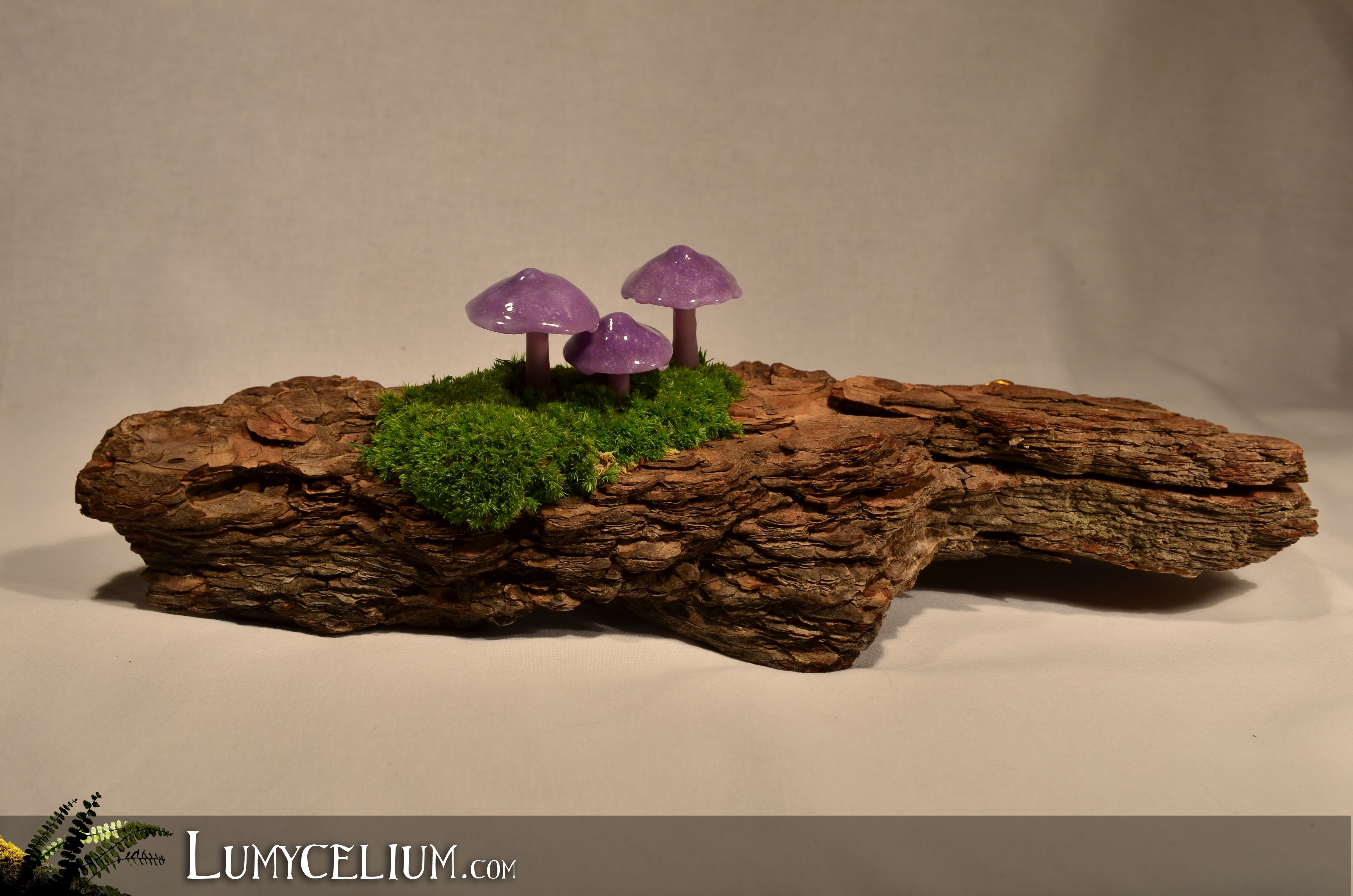 lumycelium tripod petits champignons violets led sur corce d 39 arbre et mousse v g tale. Black Bedroom Furniture Sets. Home Design Ideas