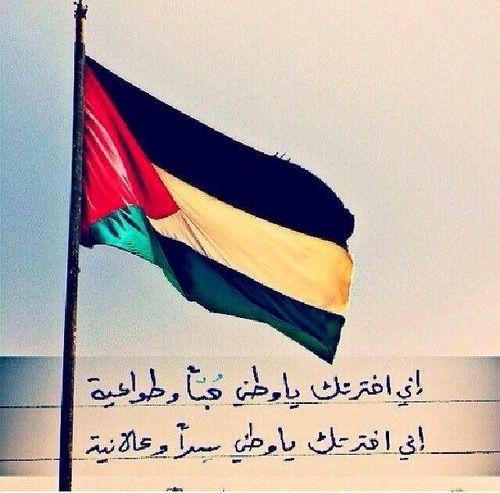 اني اخترتك يا وطني حبا وطواعيهز Palestine Don T Panic Gaza