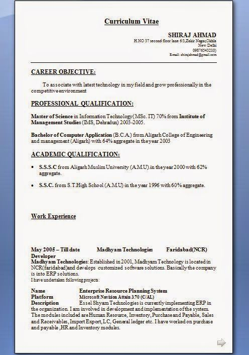free resume writing tools Sample Template Example of ExcellentCV - sample information technology resume