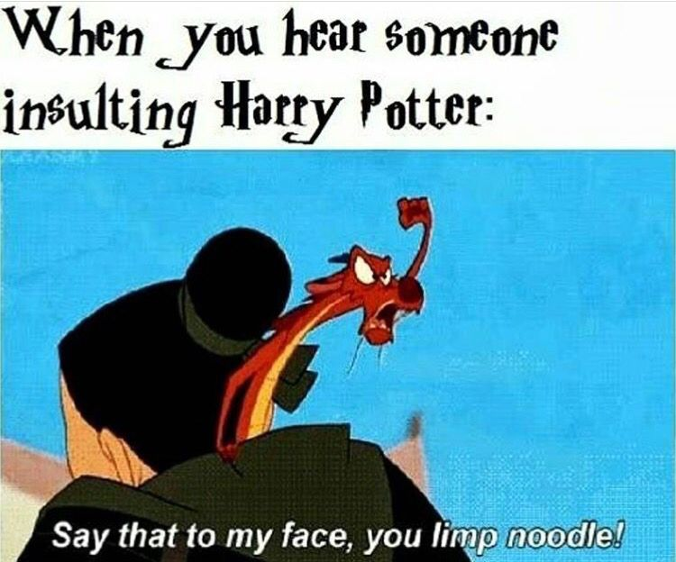 Pin By Kris Milam On Harry Potter 9 Harry Potter Jokes Harry Potter Memes Harry Potter Funny
