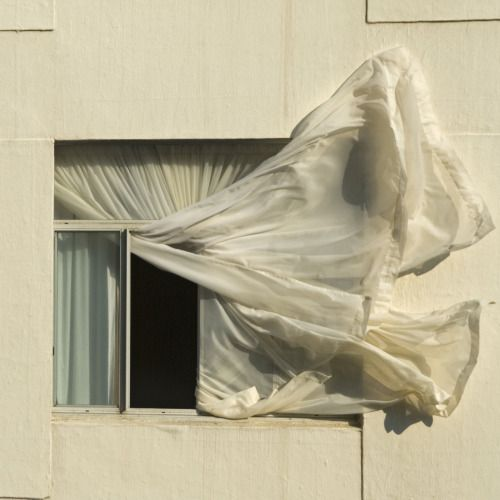 dontrblgme2:  Window (via Niquitin)