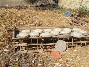 Egyptian Sun Bread