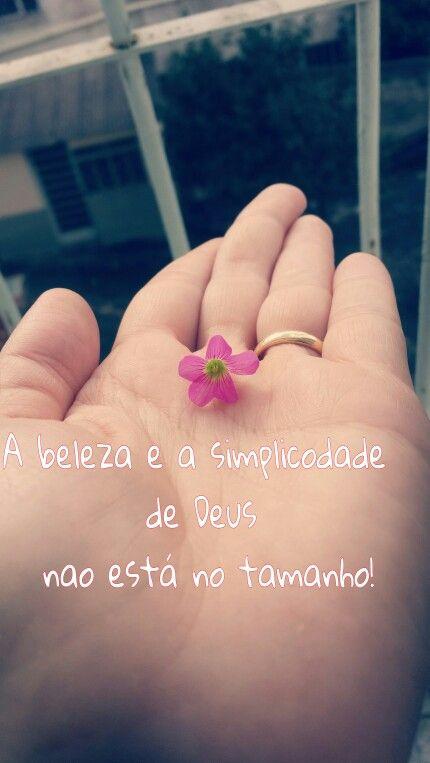 A beleza e a simplicidade de Deus não está no tamanho.