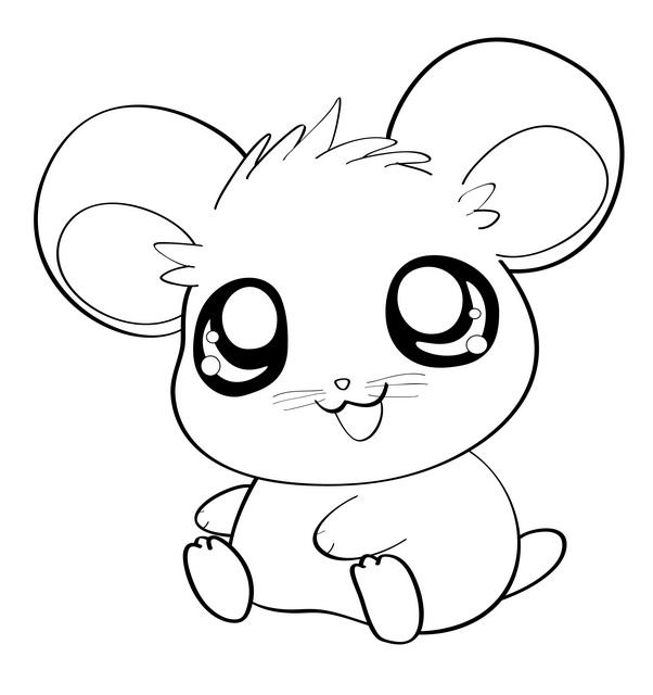 How To Draw An Anime Hamster Cute Easy Animal Drawings Cute Easy Drawings Cartoon Drawings Of Animals
