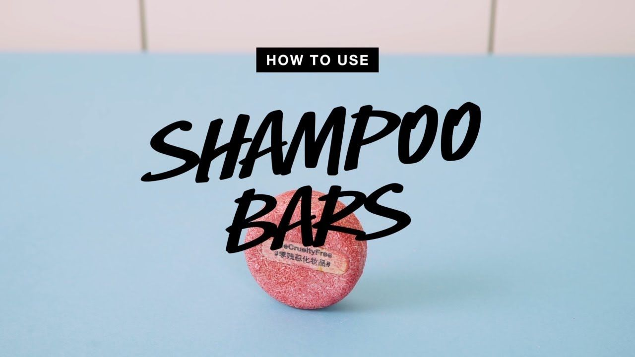 How to use shampoo bars lush lush shampoo bar