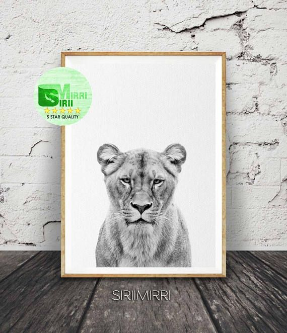 Lioness Wall Art Lion Print Black And White Animal