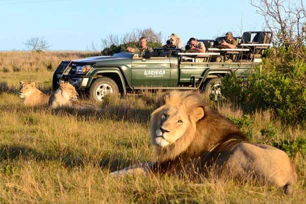 Für Fotografie-Interessierte gibt es im Kariega Game Reserve auf der Garden Route auch geführte Fotosafaris mit erfahrenem Guide.