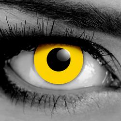Yellow Zombie Fx Contact Lenses Eifxyellowzombie Contact Lenses Color Locks White Zombie